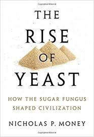 Book jacket for Rise of Yeast