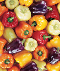 Colorful assortment of bell peppers includes red, orange, yellow, purple, and white.