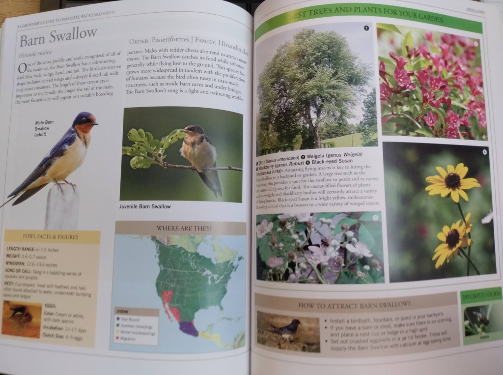 Two pages from book laid out revealing photo of bird, map of bird's range, and plants that attract the bird.